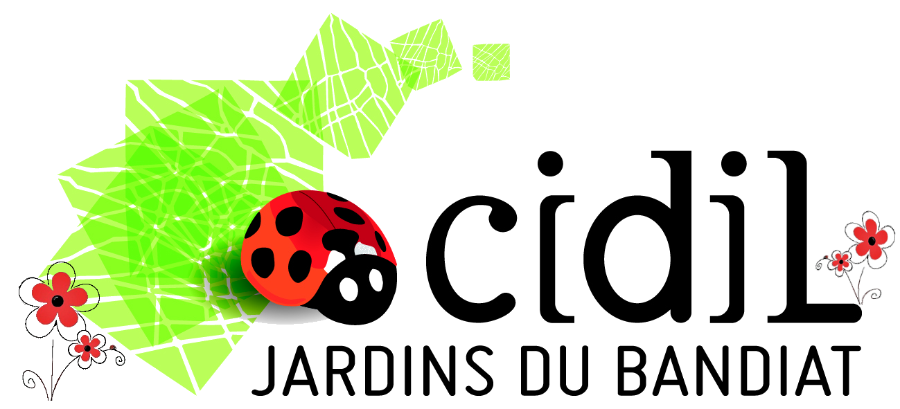 CIDIL – Carrefour Insertion Développement Initiatives Locales